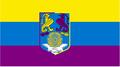 Bandera del cánulo.PNG