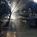 Bangladesh Village .jpg