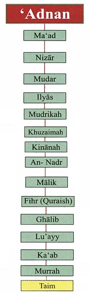 Banu Taym - A genealogy of the Banu Taym tribe.