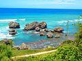 Barbados beaches 2007 031.jpg