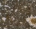 Basalt 40x M1 (41192099452).jpg