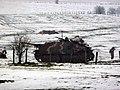 Bastogne (12).jpg