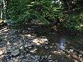 Batuliiska-river-before-Yablanitsa.jpg