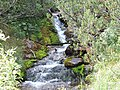 Bayuvi Dupki-Dzhindzhiritsa reserve 06.JPG