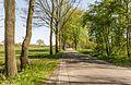 Bekhofweg ter hoogte van natuurterrein Beekdal Linde Bekhofplas 01.jpg