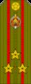 Belarus MIA—04 Colonel rank insignia (Olive)—SR.png