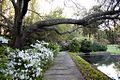 Bellingrath Gardens and Home by Highsmith 009.jpg