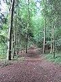 Belmontas, Vilnius, Lithuania - panoramio (77).jpg