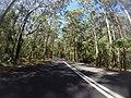 Benandarah NSW 2536, Australia - panoramio (7).jpg
