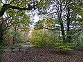 Bench in the woods, Kingmoor - geograph.org.uk - 1055929.jpg