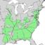 Betula nigra range map 2.png