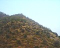 Bhangarh An archaeological discovery of an haunted city 06.jpg