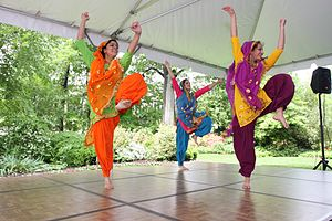 Indian Bhangra dancers- One of the many perfor...