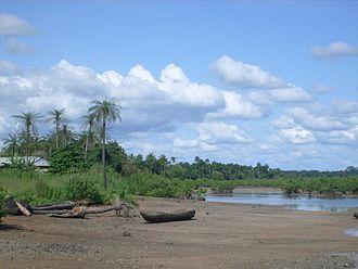 Biombo Region - Mangroves along the coast