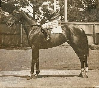 Australian Derby - Biplane, 1917 AJC Derby winner. Jockey B Deeley