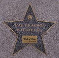 Birmingham Walk of Stars Ray Graydon.jpg