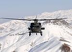 Black Hawk support DVIDS535827.jpg