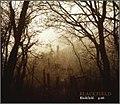 Blackfield - Blackfield (single cover).jpg