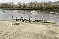 Boat Race 2014 - Reserve Race (09).jpg