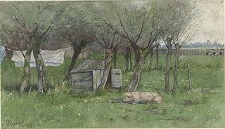 Boerenerf met liggend varken