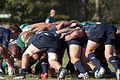 Bond University Rugby Round 1 At Home Bond VS GPS.jpg