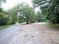 Box Hill National Trust car park - geograph.org.uk - 64726.jpg