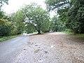 Box Hill National Trust car park - geograph.org.uk - 64726.jpg