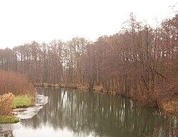BrückeNädlershorst.JPG