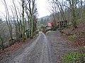 Bratřínov, údolí Kocáby, cesta k Fafkovu mlýnu (01).jpg