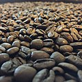 Brazilian coffee beans.jpg