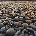 Brazilian coffee beans.jpg