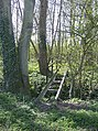 Bridge into the copse - geograph.org.uk - 983726.jpg