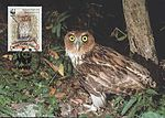 Bubo philippensis 2004 stamp+card of the Philippines.jpg