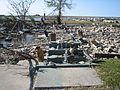 BucktownSteps11NovB.jpg