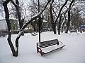 Bucuresti, Romania.Parcul Gradina Icoanei, Bucuresti. Martie 2018. Imagine cu o banca inzapezita.jpg