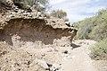 Butcher Jones Trail to Pinter's Point Loop, Tonto National Park, Saguaro Lake, Ft. McDowell, AZ - panoramio (147).jpg