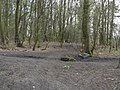 Butterley Park No.5 Colliery (High Holborn) - geograph.org.uk - 1805401.jpg