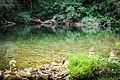 Cachoeira do segredo - Chapada dos Veadeiros GO.jpg