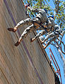 Cadets rappel down a 60-foot wall during a JROTC leadership challenge.jpg