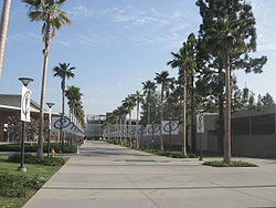 A view of the CSU Fullerton campus.