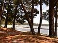 Camariñas (Ensenada da Basa) - panoramio.jpg