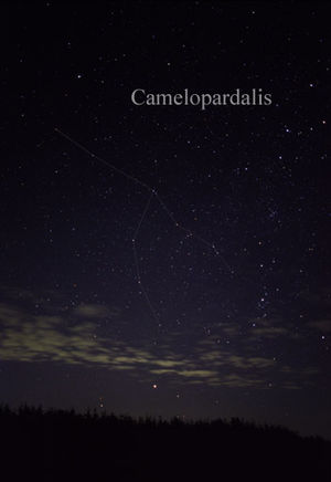 Camelopardalis - The constellation Camelopardalis as it can be seen by the naked eye.