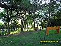"Camping municipal ""Los Tatane"" - panoramio - Carlos Hacen (2).jpg"