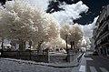 Camprodon 2014 07 29 01 IR M8.jpg