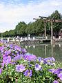 Canal fleurs.jpg