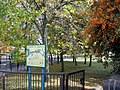 Canalside trees - geograph.org.uk - 1524393.jpg