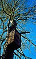 Cedar Roughs WLA0012 (26774581396).jpg