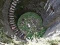 Certosa di Padula - Pozzo nella pineta.jpg