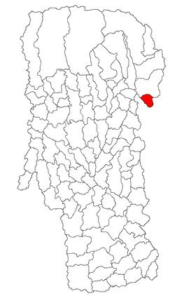 Vị trí của Cetățeni