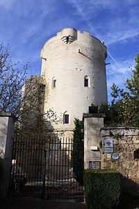 Château de droizy.JPG